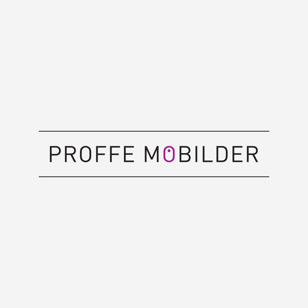 ProffeMobilder-logo-03